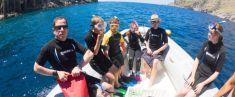 Tour in barca e snorkeling con biologo marino (3 ore - singola immersione)