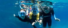 Boat tour and Snorkelling with Marine Biologist (3 hours, double immersion)
